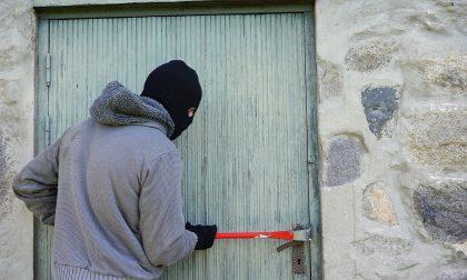 Olgiate Comasco, ladro in casa: 17enne lo mette in fuga
