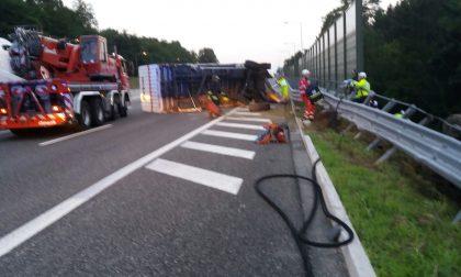 Incidente in autostrada a Cadorago: camion fuori strada. FOTO