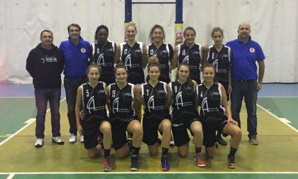 Basket Comasco le squadre nei prossimi campionati lombardi maschili e femminili