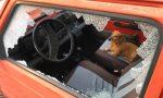 Tenta di rubare un'auto insieme al fido cagnolino. FOTO
