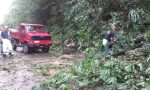 Piante e massi caduti, Berlinghina bloccata. VIDEO