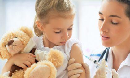 Vaccinazione antinfluenzale: i numeri da contattare da domani 3 novembre