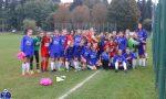 FCF Como 2000 Giovanissime debutto vincente