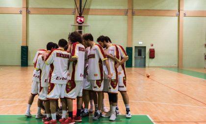 Basket maschile in campo oggi la serie D e Rovello in Silver