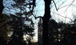 Potature spettacolari nei parchi cittadini