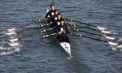 Canottaggio lariano tanti remi nostrani in acqua a Gavirate per i campionati Lombardi 2020
