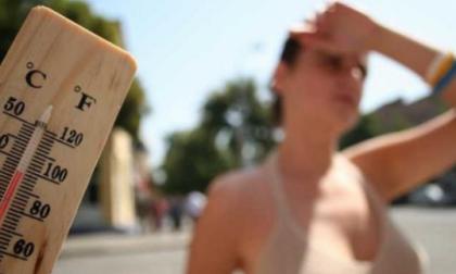 """Coldiretti: """"Il 2020 è stato l'anno più caldo della media storica"""""""