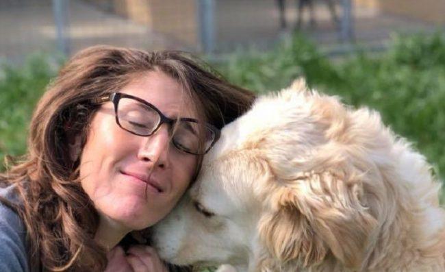 Cani cercano casa: Zito e Blue hanno bisogno di una famiglia FOTO