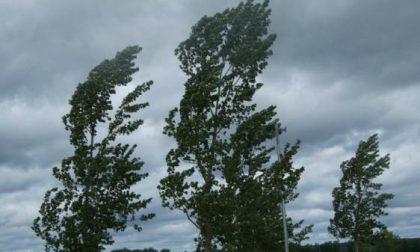 Allerta meteo per rischio idrogeologico e vento forte nel Comasco