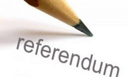 Referendum taglio dei parlamentari: dibattito in streaming con i professori dell'Insubria
