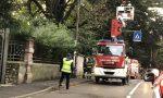 Ramo sulla statale intervengono i Vigili del fuoco