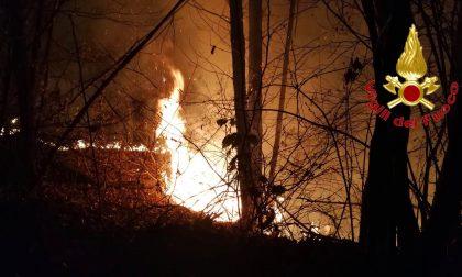 Fanno barbecue e distruggono bosco a Sorico: sanzionati per 13 milioni di euro