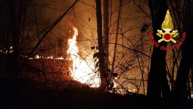 Incendi, Pd attacca: &#8220&#x3B;Regione assente sulla prevenzione&#8221&#x3B;