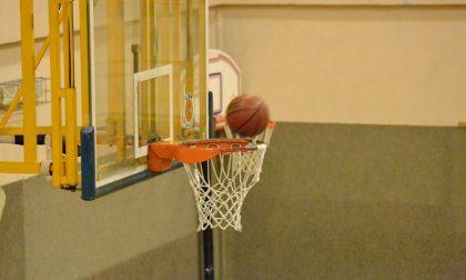 Basket serie D domani sera Tavernerio cerca il tris son Sondrio