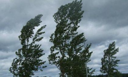 Vento forte e incendi boschivi: allerta meteo nel Comasco