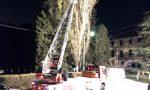 Albero pericolante abbattuto dai Vigili del fuoco