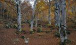 Anziana trovata morta nei boschi a Campione d'Italia
