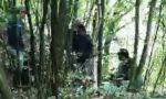 Spaccio nei boschi, paura per un escursionista FOTO E VIDEO