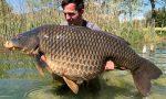 Record a Pusiano: catturata una carpa da 31 kg