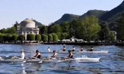Canottieri Lario remi bianconeri protagonisti su tre fronti