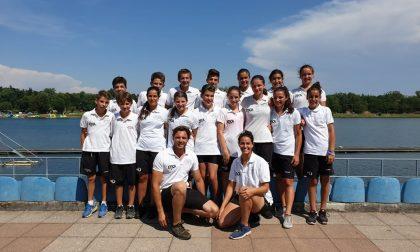 Canottaggio lariano il club ha vinto 32 medaglie al festival dei Giovani 2019