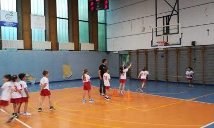 Sport Club Brianza definite le squadre e lo staff del minibasket SCB