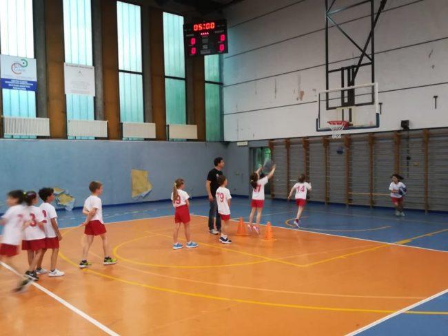 sport club brianza minibasket