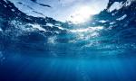 A lezione per l'ambiente: 500 studenti coinvolti in un progetto di Acsm Agam