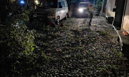 Maltempo nell'Erbese in nottata black-out e alberi caduti FOTO