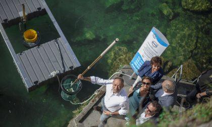 Lifegate sceglie il lago di Como per posizionare il suo cestino mangiaplastica