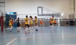 Albese Volley al via anche la campagna abbonamenti 2019/20