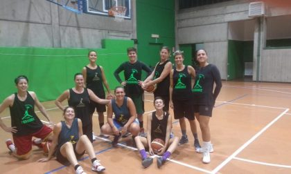 Basket femminile Vertemate stasera ospita Valmadrera
