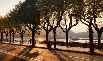 Cosa fare a Como e provincia: gli eventi del weekend (26-27 OTTOBRE 2019)