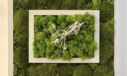 Age Verde alla Mostra dell'Artigianato di Erba