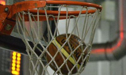 Basket femminile la comasca Paola Novati firma il colpo del Sanga Milano