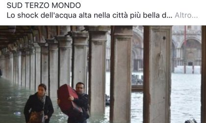 """Acqua alta a Venezia, Bizzozero: """"A parte la pizza, il sud ha portato al nord solo droga, 'ndrangheta, camorra e cosa nostra"""""""