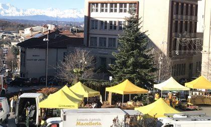 Gatto intrappolato sull'albero di Natale a Cantù e salvato dai Vigili del Fuoco