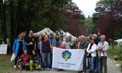 """Il Circolo Ilaria Alpi: """"No al nuovo supermercato che cancellerebbe un'area verde"""""""