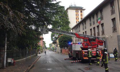 Statale chiusa per un intervento dei Vigili del fuoco – FOTO e VIDEO