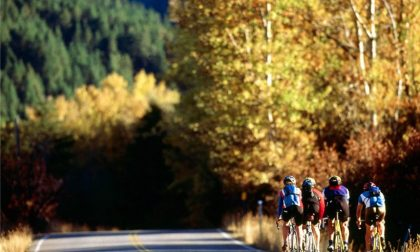 Ciclismo, venerdì 11 si svolgerà l'Assemblea Elettiva Ordinaria Provinciale