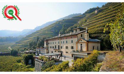 La Casa Vinicola Triacca inserita fra le Eccellenze Italiane