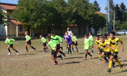 """Calcio giovanile l'Azzurra Mozzate pronta con la sua """"cantera"""" per nuove avventure"""