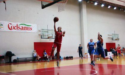 Basket femminile il Basket Como cala il primo tris di rinforzi per la serie C