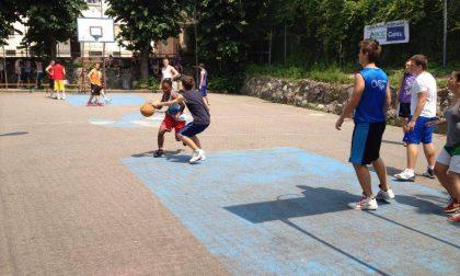 Pallacanestro lariana oggi i cestisti dell'Alebbio Como tornano in campo dai senior al minibasket