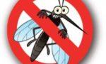 Troppe zanzare: il Comune distribuisce un kit larvicida