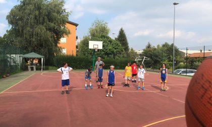Basket lariano sabato 26 settembre Presentation day della Pallacanestro Albavilla