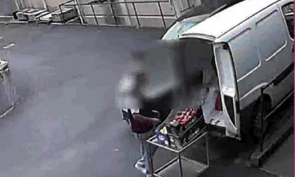 Responsabile della mensa dell'ospedale di Cantù rubava cibo e materiale sanitario VIDEO