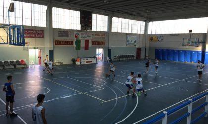 Basket lariano, anche Le Bocce Erba dice stop alla sua attività