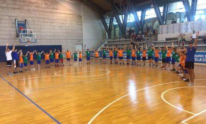 Basket giovanile, domenica 27 settembre arriva l'Open day minibasket GSV