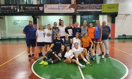 Basket femminile ai nastri di partenza anche le cinque rappresentanti lariane